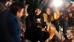 Группа в составе друзья сидя в лесе зимы огнем и есть зефиры Молодая женщина flirting и усмехаясь акции видеоматериалы