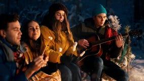 Группа в составе друзья сидя в лесе зимы огнем и есть зефиры на протыкальниках Гитара удерживания молодого человека сток-видео