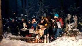 Группа в составе друзья сидя в лесе зимы огнем и есть зефиры Принимать selfie сток-видео