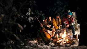 Группа в составе друзья сидя в лесе зимы огнем и жаря зефиры Гитара удерживания молодого человека сток-видео