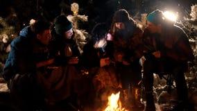 Группа в составе друзья сидя в лесе зимы огнем Молодая женщина говоря ее друзьям страшный рассказ, держа акции видеоматериалы