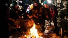 Группа в составе друзья сидя в лесе зимы огнем Молодая женщина говоря ее друзьям страшный рассказ акции видеоматериалы