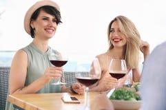 Группа в составе друзья с стеклами вина Стоковые Изображения RF