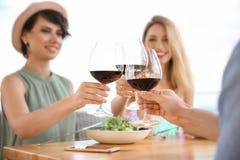 Группа в составе друзья с стеклами вина Стоковое Изображение