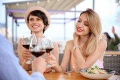Группа в составе друзья с стеклами вина Стоковые Фото