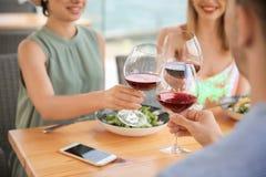 Группа в составе друзья с стеклами вина Стоковая Фотография