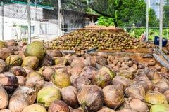 Группа в составе дух кокоса приставной резак аранжирует, сортирует аккуратный p стоковое фото rf