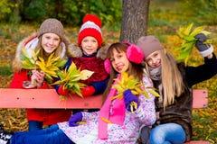 Группа в составе девушки в парке осени с листьями Стоковые Изображения RF