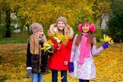 Группа в составе девушки в парке осени с листьями Стоковое фото RF