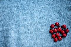 Группа в составе деревянные ladybugs Стоковые Фотографии RF