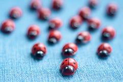 Группа в составе деревянные ladybugs Стоковая Фотография