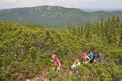Группа в составе дети взбираясь гора Стоковое Изображение RF