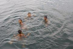 Группа в составе дети плавая в озере стоковое фото rf