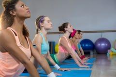 Группа в составе женщины выполняя йогу Стоковые Изображения