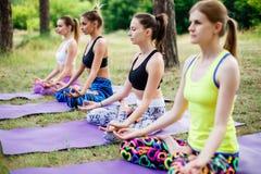 Группа в составе женщины делая йогу на свежей зеленой траве outdoors Здоровый уклад жизни Стоковое Фото