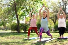 Группа в составе женщины практикуя йогу в парке на солнечный день Стоковые Фото