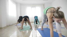 Группа в составе женщины практикуя представление йоги ратника и размышляя в замедленном движении для того чтобы получить над депр видеоматериал
