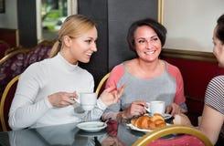 Группа в составе женщины принимая переговор над чашкой кофе стоковое изображение rf