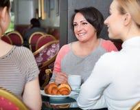 Группа в составе женщины принимая переговор над чашкой кофе стоковая фотография