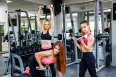 Группа в составе женщины спорта разрабатывая в спортзале Стоковые Изображения