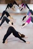 Группа в составе женщины yogi в представлении Adho Mukha Svanasana йоги Стоковые Изображения RF