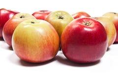 Группа в составе зрелые яблоки на белой предпосылке Стоковые Фотографии RF