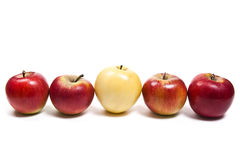 Группа в составе зрелые яблоки на белой предпосылке Стоковое Изображение RF