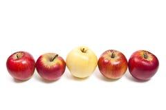 Группа в составе зрелые яблоки на белой предпосылке Стоковое Изображение