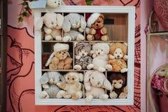 Группа в составе игрушки заполненные нежностью на полке Стоковые Фото
