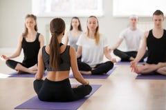 Группа в составе йога молодых sporty людей практикуя, представление Sukhasana стоковая фотография