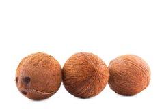 Группа в составе кокосы изолированные на сияющей предпосылке Кокос с путем клиппирования С богатым вкусом кокосы вполне витаминов Стоковые Фото