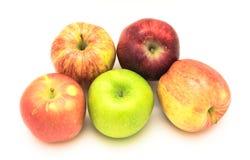 Группа в составе конца-вверх бабушка Смит, красно- очень вкусное, торжественный, яблоки Фудзи стоковое изображение