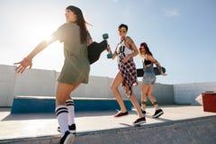 Группа в составе конькобежцы женщин наслаждаясь на парке конька Стоковое фото RF