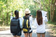 Группа в составе красивые молодые женщины идя в лес, Стоковые Изображения