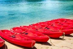 Группа в составе красное каное на пляже Стоковые Фото