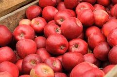 Группа в составе красные яблоки в деревянной коробке Стоковое фото RF