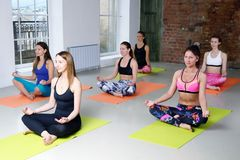 Группа в составе маленькие девочки практикует йогу в положении лотоса Стоковые Изображения RF