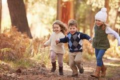 Группа в составе маленькие ребеята бежать вдоль пути в лесе осени Стоковое фото RF
