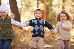 Группа в составе маленькие ребеята бежать вдоль пути в лесе осени Стоковые Фотографии RF