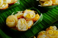 Группа в составе мини фиолетовый баклажан, мини зеленый баклажан, огурец, подогнала фасоль здоровый овощ Таиланда для диеты Стоковое Изображение