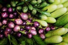 Группа в составе мини фиолетовый баклажан, мини зеленый баклажан, огурец, подогнала фасоль здоровый овощ Таиланда для диеты Стоковые Изображения