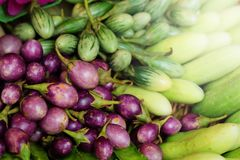 Группа в составе мини фиолетовый баклажан, мини зеленый баклажан, огурец, подогнала фасоль здоровый овощ Таиланда для диеты Стоковые Изображения RF