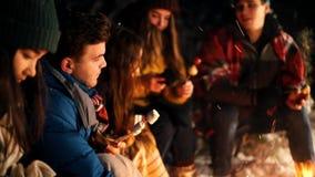 Группа в составе молодые люди в лесе зимы сидя огнем Нагревать marshmello огнем сток-видео