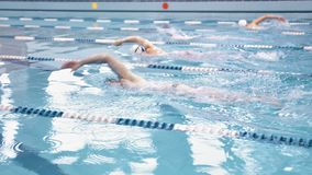 Группа в составе молодые мужские атлетические профессиональные пловцы имея ползание тренировки на waterpool видеоматериал