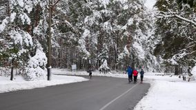 Группа в составе молодые подходящие бегуны бежит в парке зимы Тренировки хода утра в снежном парке акции видеоматериалы