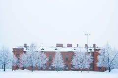Группа в составе морозные деревья стоковое фото rf