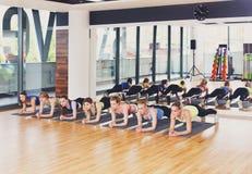 Группа в составе молодые женщины в классе фитнеса, тренировке планки Стоковое Изображение RF