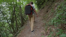 Группа в составе молодые пешие друзья идя в взгляд задней части зада леса Trekking подростков на треке с рюкзаками HD видеоматериал