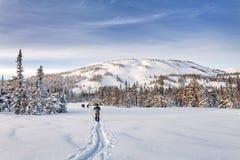 Группа в составе молодые backpackers лыжников в снежных горах Стоковые Изображения
