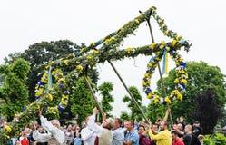 Группа в составе мужчина вызывается добровольцем работа на поднимать maypole в традиционном образе на торжестве середины лета в H Стоковые Изображения